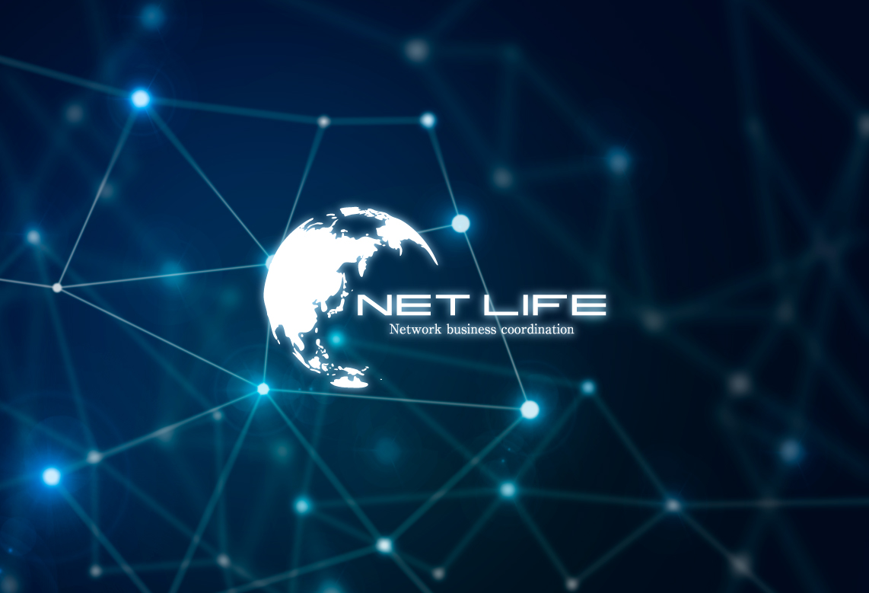 ネットワーク、システム開発会社の企業ロゴデザイン